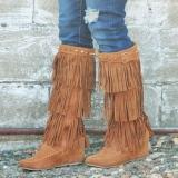 High Wedge Fringe Boots